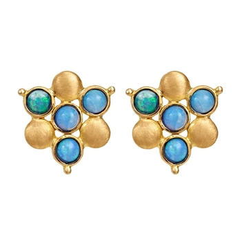 Exotic Opal and 18K Gold Stud Earrings